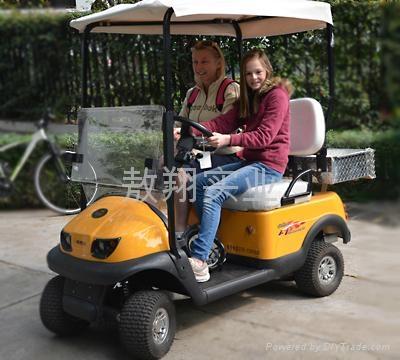 兩人座電動老人代步車 1