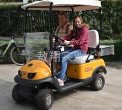 两人座电动老人代步车