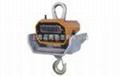 佛山直式耐高溫電子吊秤