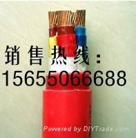 硅橡膠電纜