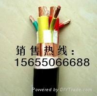 变频器电缆