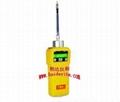 VRAE 五合一气体检测仪促销(主机+传感器) 1