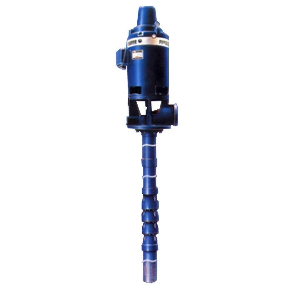 Vertical Pump Motors Images