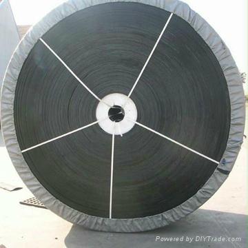 wire conveyor belt 4