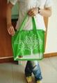 泰安手提袋宣传袋广告袋