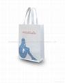 pp non-woven bag
