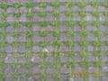 井子草坪磚