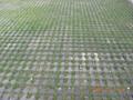 陝西生態環保停車場草坪磚 4