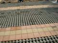 西安植草磚 2