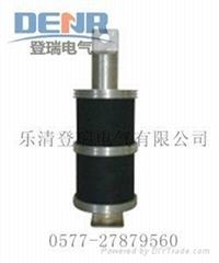 LXQ3電壓互感器中性點用消諧器
