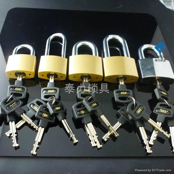 不鏽鋼鎖芯電力通開挂鎖 5