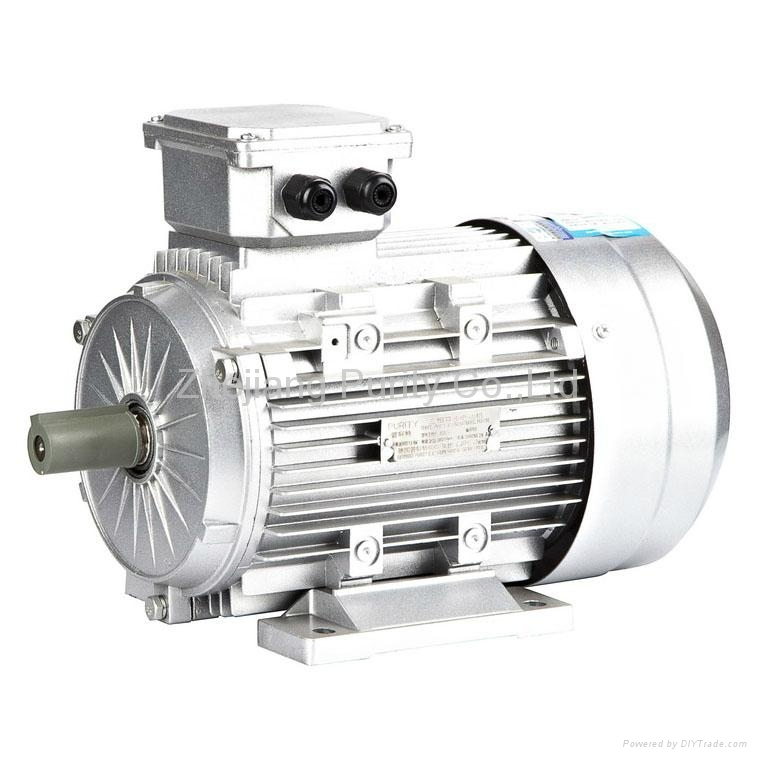 Y2 Induction AC Electric Motors-B3 1