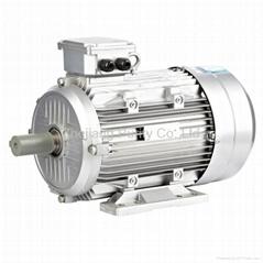 Y2 Aluminum Induction Electric Motors 1HP-B3