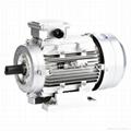 Y2 Aluminum Electric Motors-B3 1