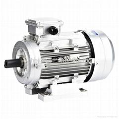 Y2 Aluminum Electric Motors-B3