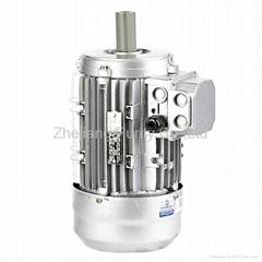 Y2 Aluminum Asynchronous Electric Motors-B14