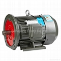 Y Cast Iron Asynchronous Motors-B35