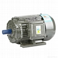 Y2 Iron Induction Electric Motors-B3