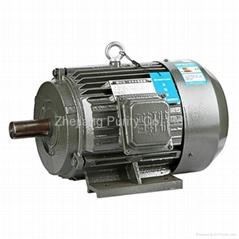 Y Cast Iron Asynchronous Motors-B3