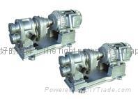 CB不锈钢耐腐蚀齿轮泵