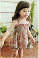 Children's Dresses girl dress little