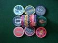 Ceramic poker  chip 1