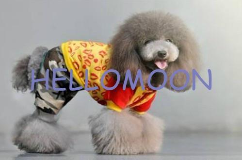 pet dog clothes 2