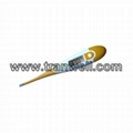 Flexible Digital Thermometer