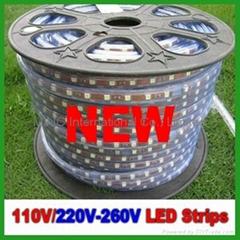 NEW 220V SMD3528 LED Strip Light