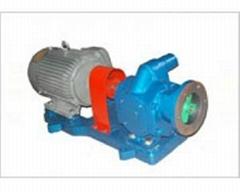 高真空齿轮泵1 GZB1
