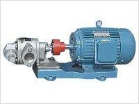 KCB200/0.36不锈钢齿轮泵