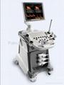 3D software Trolley Type Color Doppler System Ultrasound Scanner