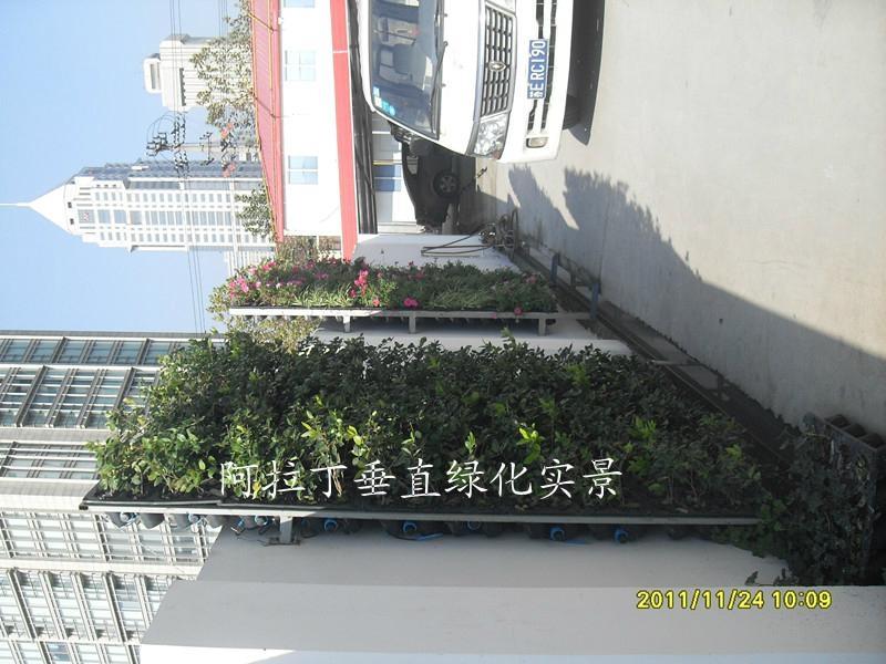 阿拉丁垂直绿化系统 2
