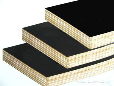 建築膜板 3