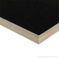 建築膜板 4