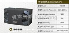 BG-868音箱