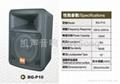 BG-P10 Loud Speaker