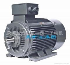 Y2系列普通电机
