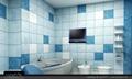彩色边框防水电视 4