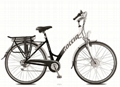 electric power assisted bicycle - carnation