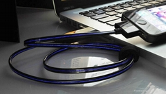 NEW Visible Blue Flashing Sync Charge Cable for iPhone,iPad and iPod