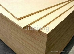 Birch Core Film Faced Plywood