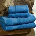 Luxury Turkish Bath Towels 1
