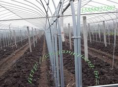 供应钢管温室大棚骨架GP5222