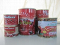 18-32Brix tomato paste packed in 850g tin can 2