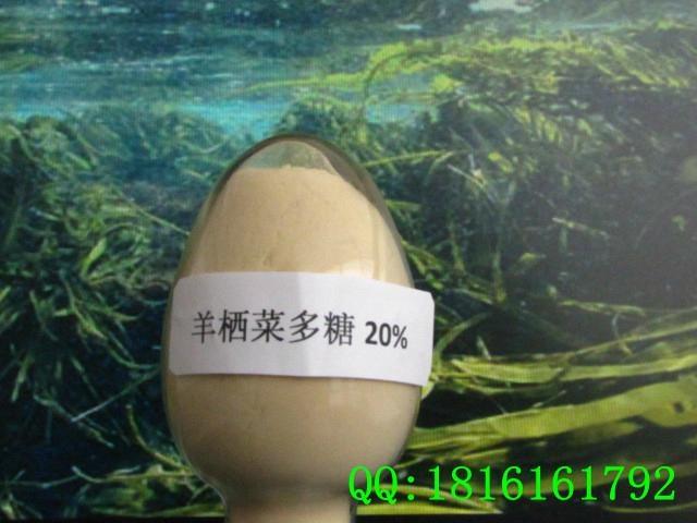 植物来源:羊栖菜,褐藻门马尾科马尾藻属植物。 有效成分:褐藻多糖硫酸酯(Fucoidan,FCD),又称岩藻聚糖硫酸酯,分子量为42000-95000。 规格:20% 检测方法:UV 产品性状:白色或浅黄色粉末、微带焦甜气息。 包装:1kg/铝箔袋, 25kg/桶 储存方法:阴凉干燥处存放。打开包装后应尽快使用,防止产品吸潮结块。 保质期:两年 用途: A、应用到医药上有抗肿瘤、调节免疫、降血糖、降血脂、抗凝血、抗氧化,促进生长发育等功效。 B、应用到化妆品,有保湿、美白、抗衰老功效。 C、应用到烟草上可