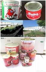 3000g Tomato paste/sauce