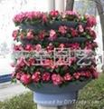 半圓組合花盆 3