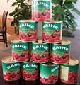 番茄酱罐头210克