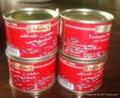 番茄酱罐头210克 2